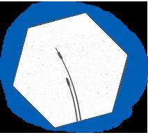 ico-1